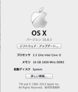 ちゃんと16GB認識されました!